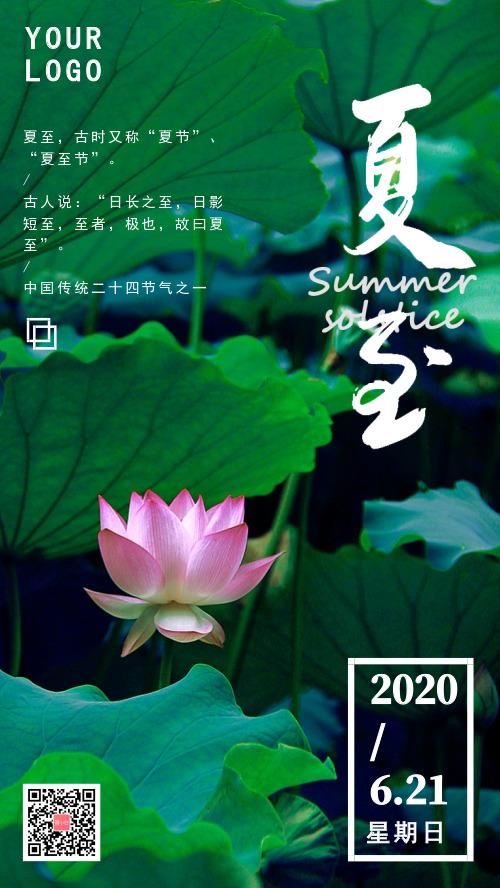 夏季荷花小清新主题夏至手机海报