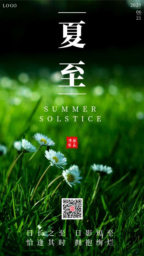 简约绿色植物传统节气夏至海报