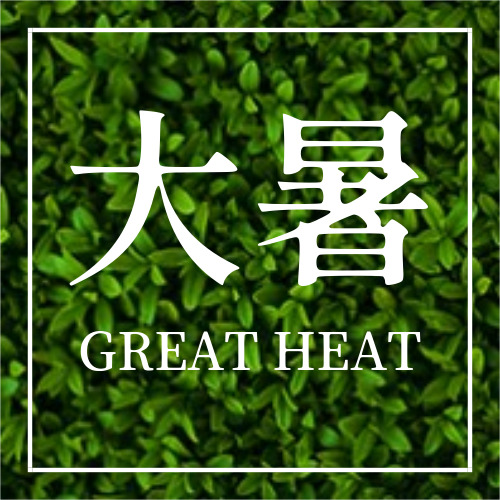 简约绿色大暑节气公众号封面小图