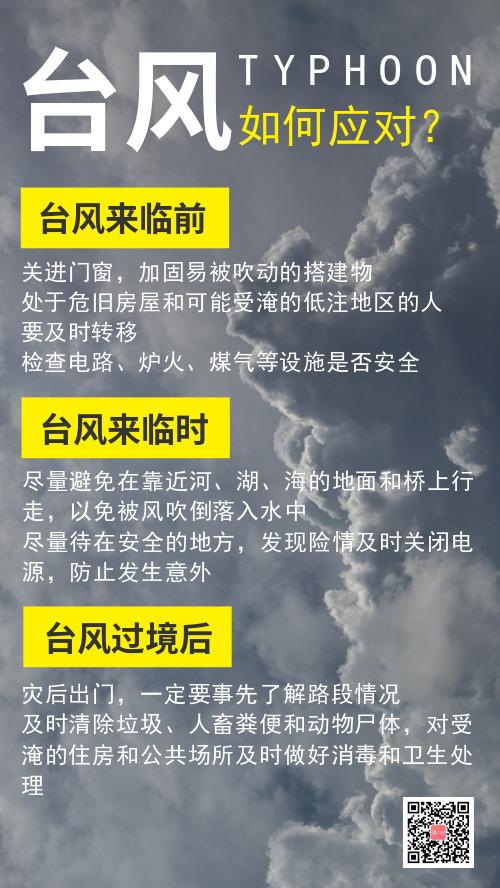 通知如何应对台风的措施手机海报
