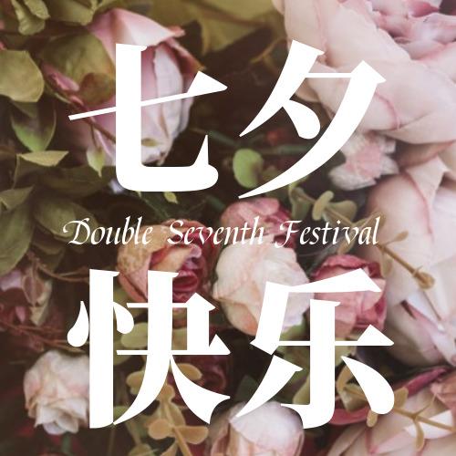 粉色玫瑰背景七夕快乐公众号小图