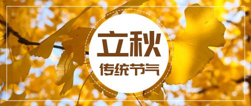 简约秋天传统节气立秋公众号首图