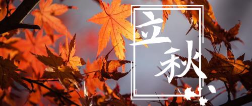 枫叶摄影立秋公众号首图