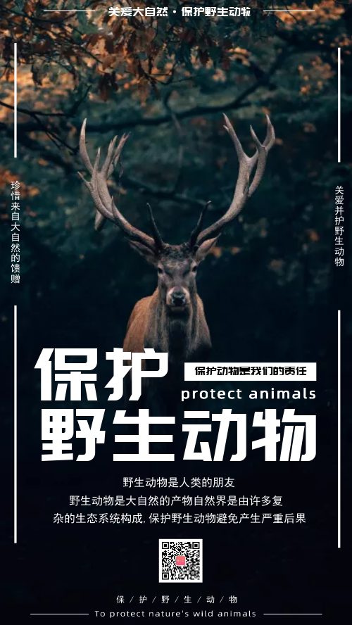 简约保护野生动物公益环保海报