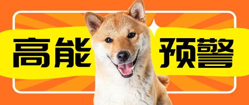 doge高能预警狗头公众号首图