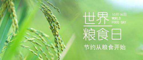 世界粮食日公众号封面首图