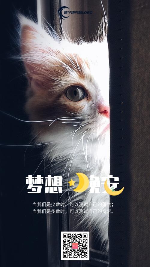 简约励志情感表达猫咪日签