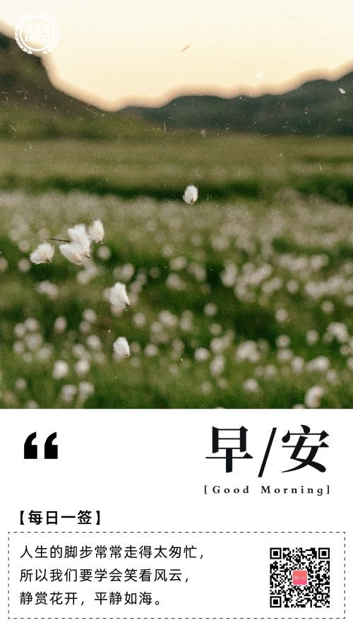 飞舞花朵早安日签