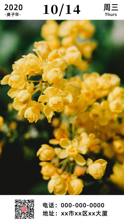 简约黄色花朵早安日签