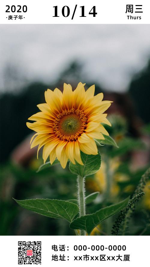 簡約美麗花朵早安日簽