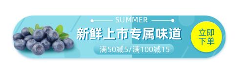 水果新鲜上市促销胶囊banner