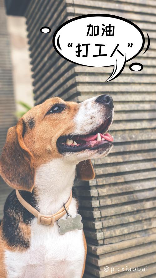 创意狗子加油打工人手机壁纸