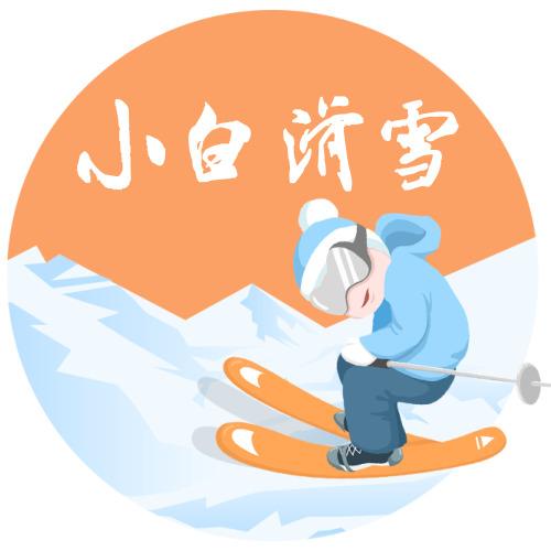 简约插画滑雪logo设计
