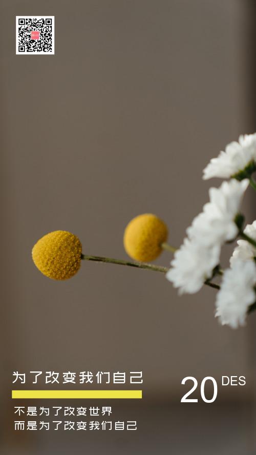 简约励志白色花朵心情个签