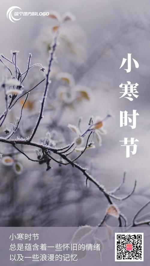 简约小寒节气摄影图海报
