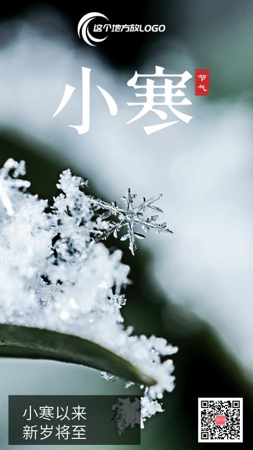 简约绿色小清新小寒节气海报