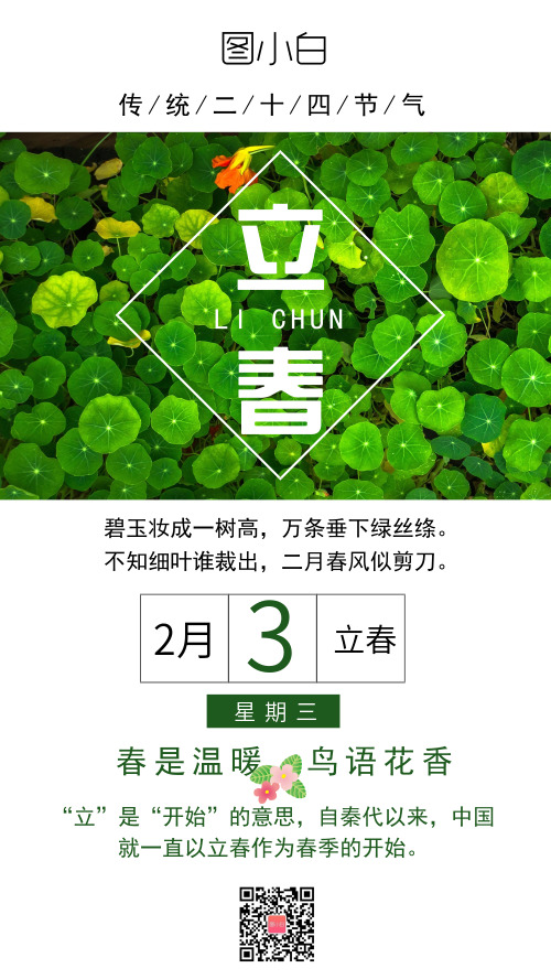 立春二十四节气绿色清新手机海报