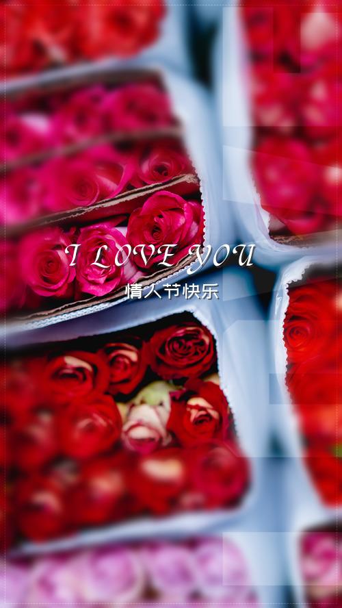 唯美玫瑰浪漫情人节海报