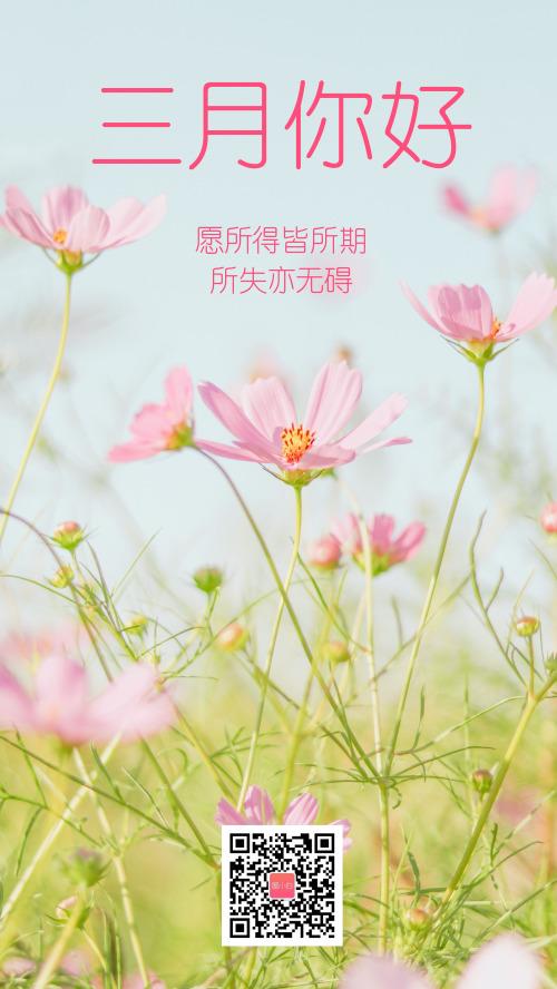 粉色清新文藝三月你好攝影圖海報
