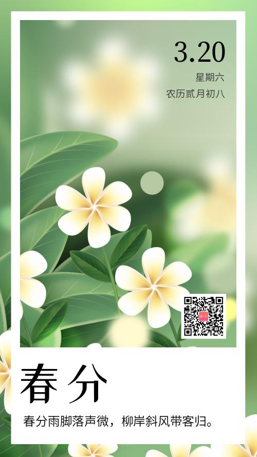 清新文藝簡約插畫春分節氣海報
