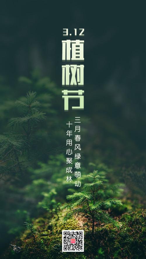 312植树节植物摄影简约海报hs