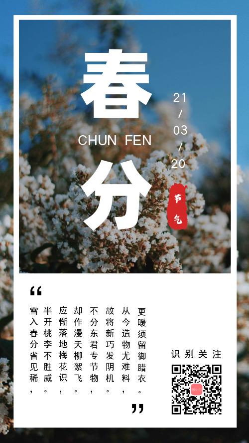 簡約小清新春分節氣宣傳手機海報