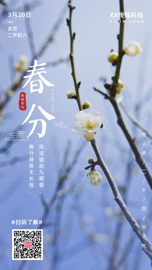 简约图文春分节气宣传手机海报