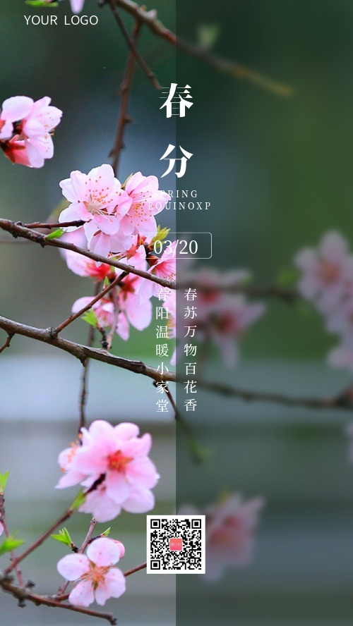 春暖花開春分節氣桃花春天海報
