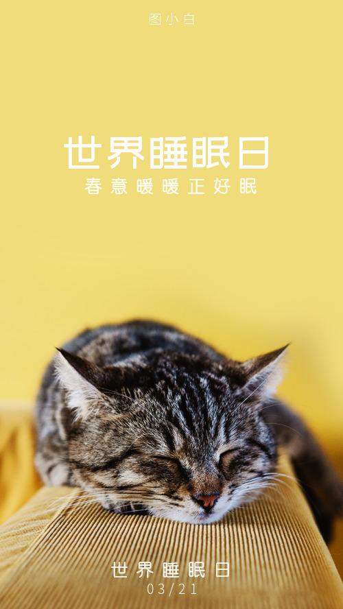 世界睡眠日簡約貓咪春日溫馨海報