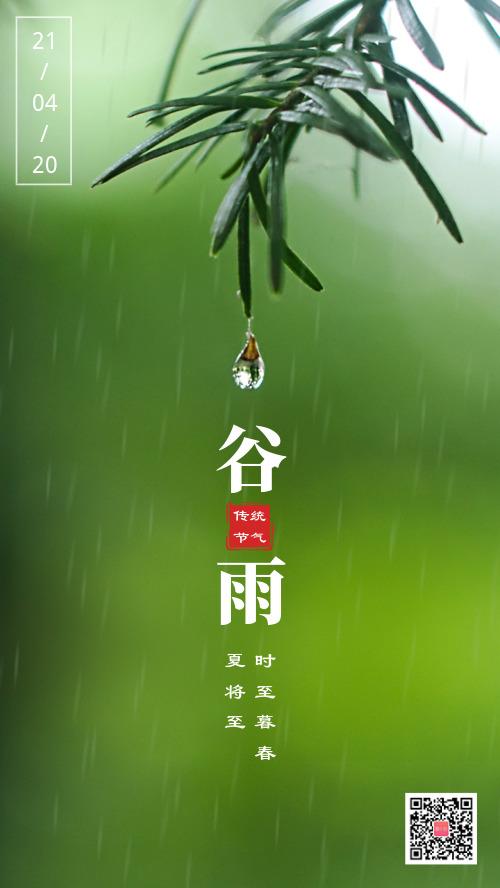 谷雨傳統節氣圖文攝影海報