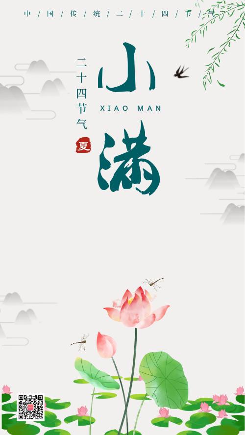小满中国风传统节气荷花海报DF
