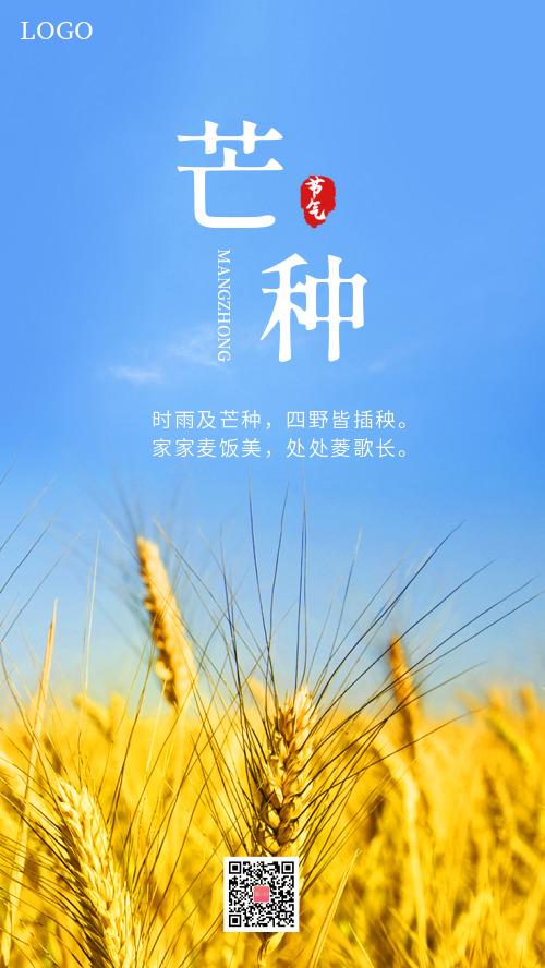 芒种节气摄影海报CY